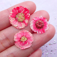 Watermelon Pink Pressed Flower | Small Dried Flowers | Resin Craft Supply (3pcs)