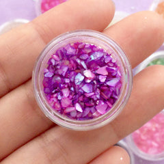 Iridescent Seashell Flake Assortment | Sea Shell Flakes | Resin Inclusions | Filling Materials for Resin Craft (12 Colors)