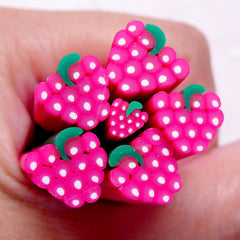 Raspberry Fimo Cane Strawberry Polymer Clay Cane (Large / Big) Miniature Fruit Dollhouse Food Scrapbooking Embellishment Earring Making BC79