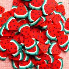 Watermelon Polymer Clay Cane Fruit Fimo Cane Nail Art (Cane or Slices) Dollhouse Food Jewellery Miniature Sweets Deco Cute Resin Craft CF025