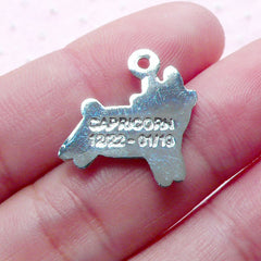 Capricorn Enamel Charm Zodiac Charm (1 piece / 17mm x 18mm / Silver) Astrology Horoscope Charm Personalized Jewelry Birth Sign Charm CHM1920