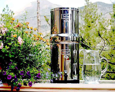 big berkey filter