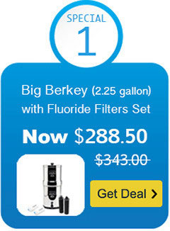 Big Berkey Water Filter with Black Berkey Filter and Fluoride Filter Set