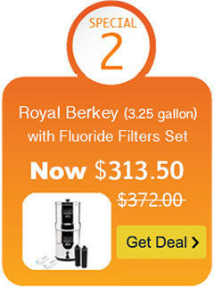 Royal Berkey Water Filter with Black Berkey Filter and Fluoride Filter Set