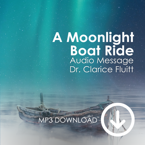 A Moonlight Boat Ride MP3