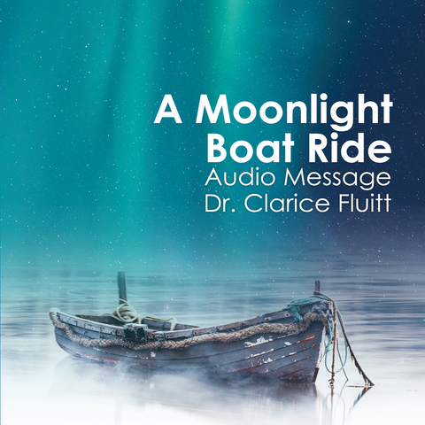 A Moonlight Boat Ride