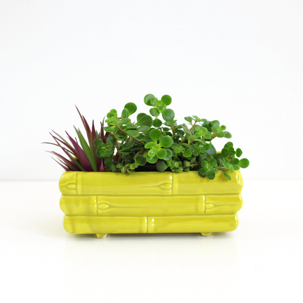 SOLD - Mid Century Ceramic Yellow-Green Bamboo Planter