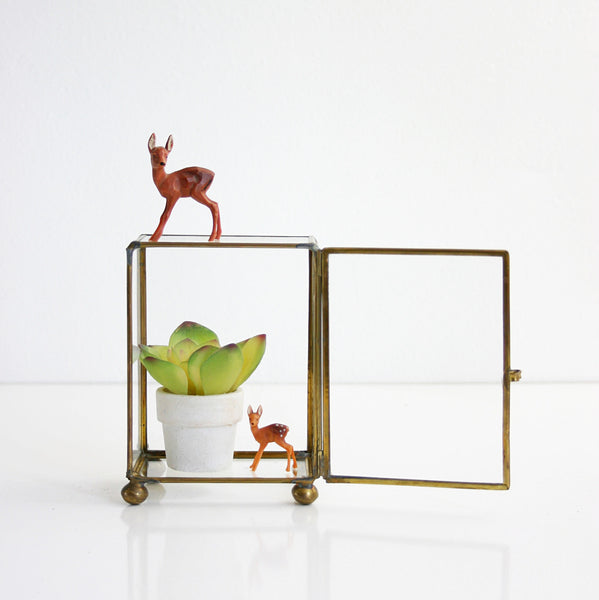 SOLD - Vintage Glass and Brass Curio Box / Mid Century Display or Terrarium