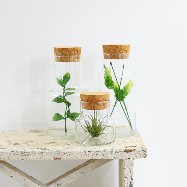 SOLD - Vintage Glass Apothecary Jars with Cork Lids
