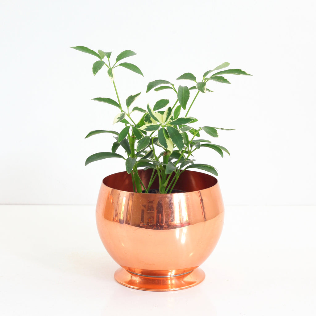 SOLD - Mid Century Copper Planter by Coppercraft Guild
