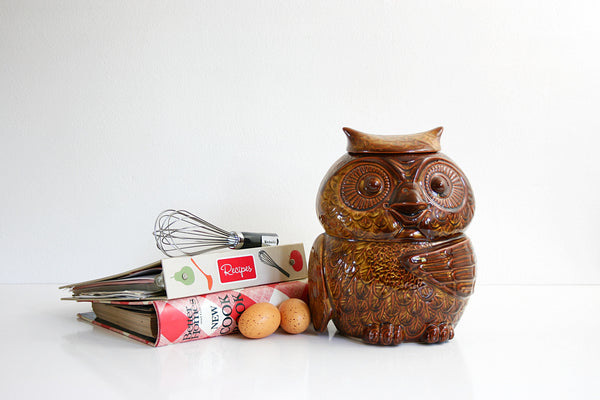 SOLD - Vintage McCoy Woodsy Owl Cookie Jar / Mid Century McCoy Owl Canister in Coffee Brown