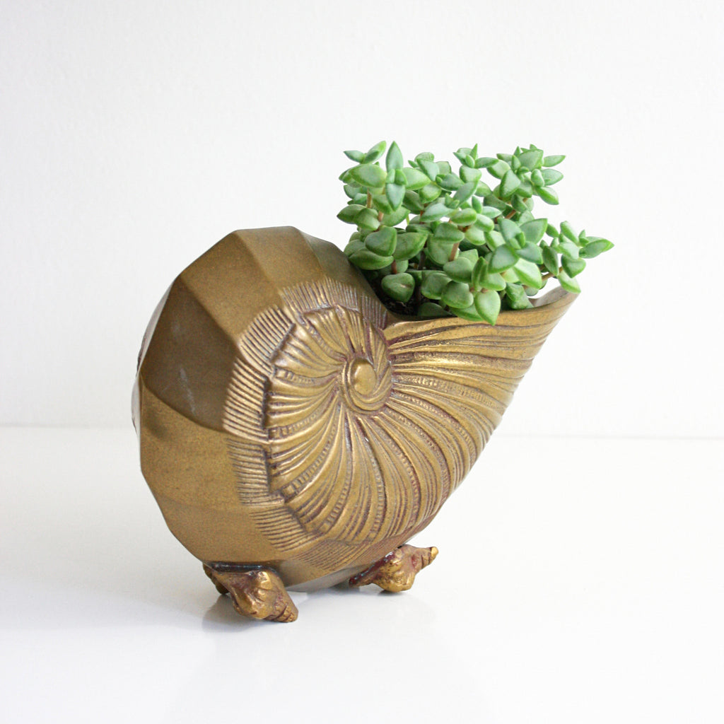 Sold mid century solid brass nautilus shell vase hollywood sold mid century solid brass nautilus shell vase hollywood regency sea shell planter reviewsmspy