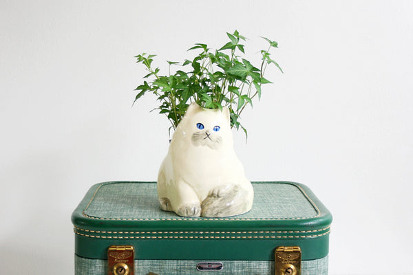 SOLD - Mid Century Takahashi Cat Planter / Vintage White Ceramic Kitten Planter