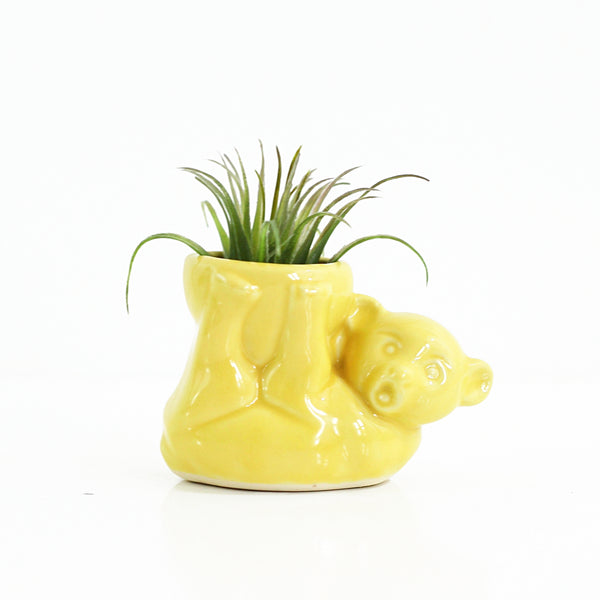 1940s Morton Pottery Yellow Bear Planter
