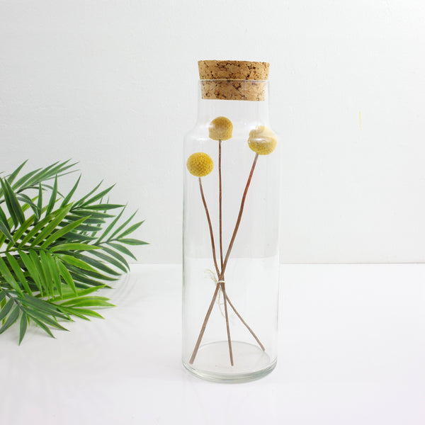 SOLD - Vintage Glass Apothecary Jar with Cork Lid