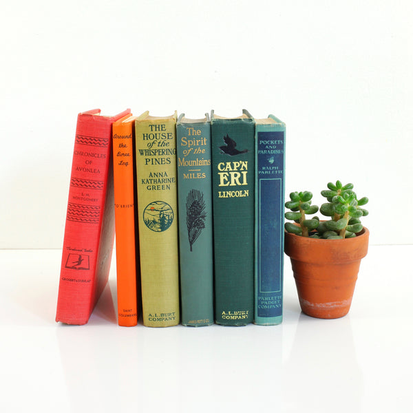 SOLD - Vintage Hardcover Rainbow Book Collection *Free US Shipping*