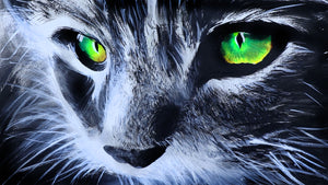 Cat with Electric Green Eyes