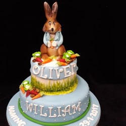 Two tier Peter The Rabbit Cake