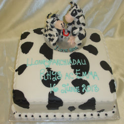 Cow Engagement Cake