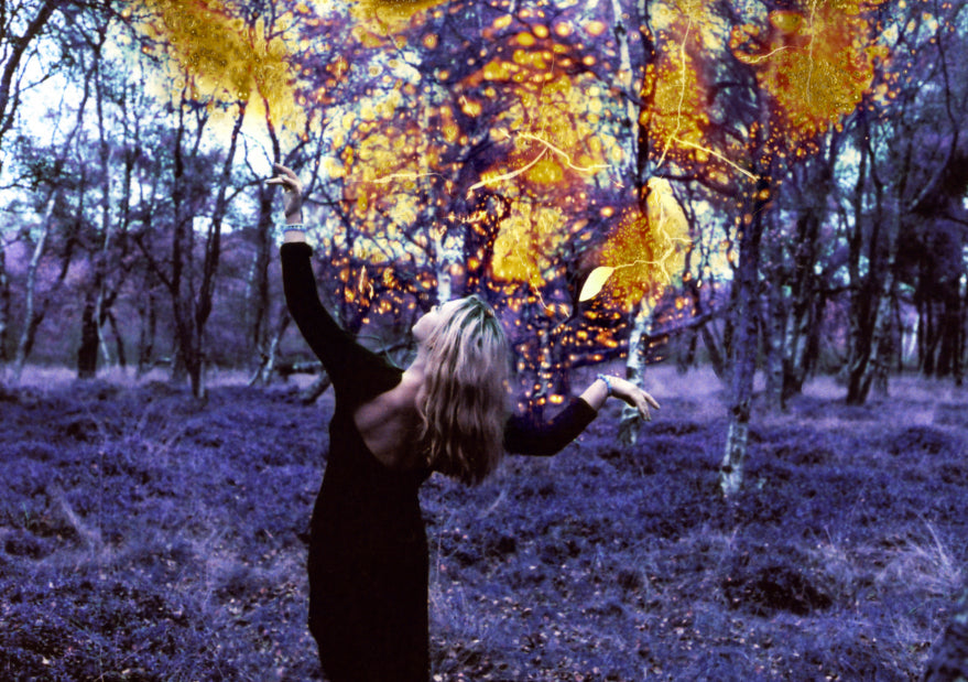 Film photography by Rebecca Broddbakker