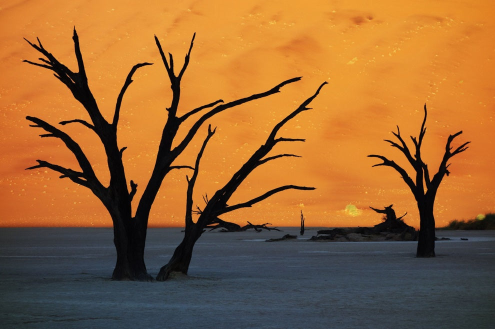 At the surreal landscape of Deadvlei, in Namibia's Sossusvlei National Park