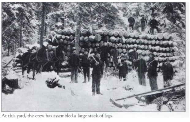 Logging And Lumbering In Maine
