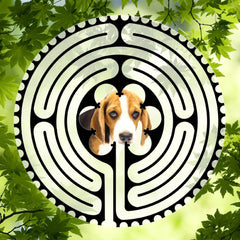 Popular Doggy Labyrinth-mazes
