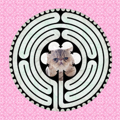 Kitty Kats - Popular Labyrinth - mazes