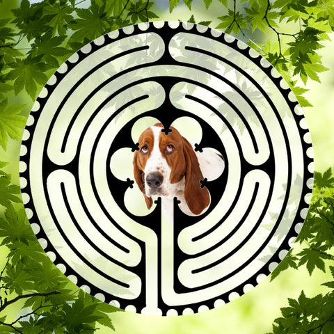 Bassett Hound - Doggy Labyrinth-maze