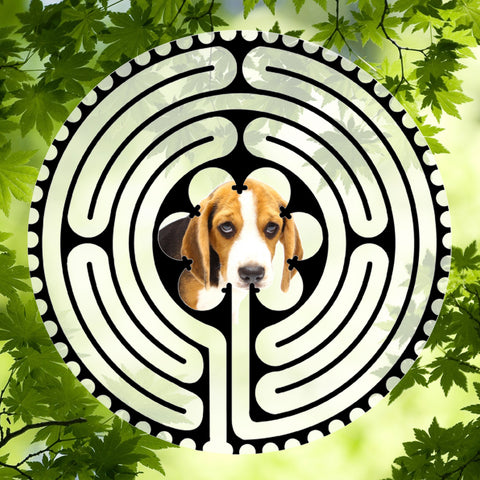 Beagle Puppy - Doggy Labyrinth-maze