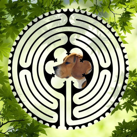 Beagle Side View - Doggy Labyrinth-maze