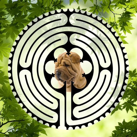 Boxer Puppy Sharpei - Doggy Labyrinth-maze