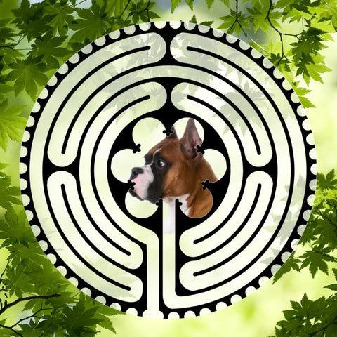 Boxer Side View - Doggy Labyrinth-maze