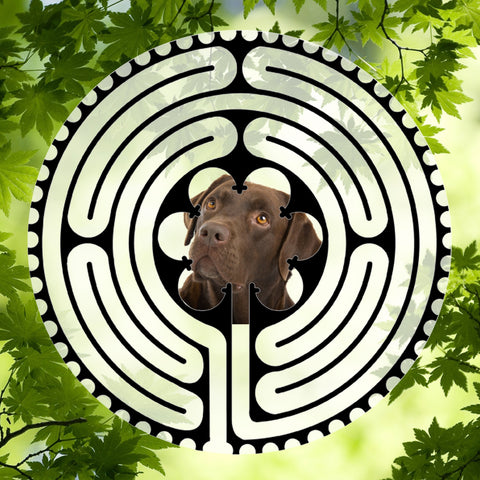 Labrador Retriever Dark Doggy Labyrinth-maze