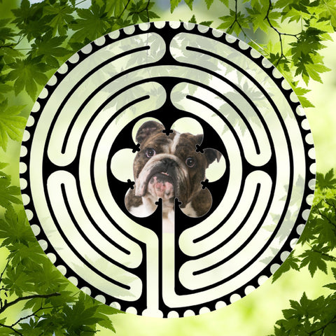 Bulldog English Brown - Doggy Labyrinth-maze