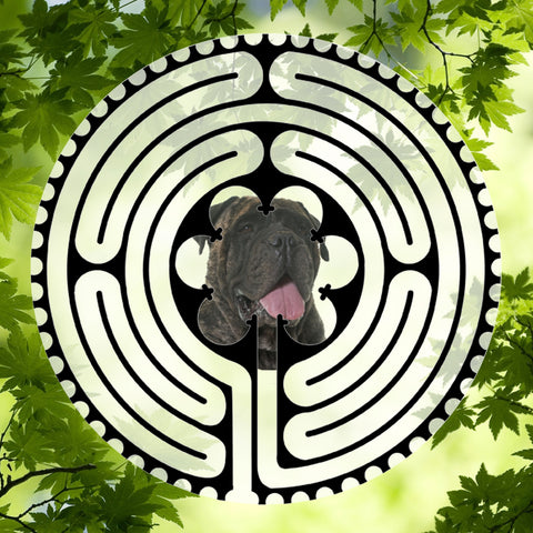Bull Mastiff Dark - Doggy Labyrinth-maze