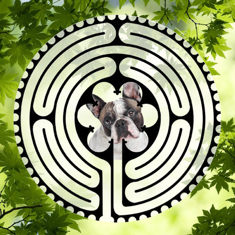 Bulldog French BW - Doggy Labyrinth-maze