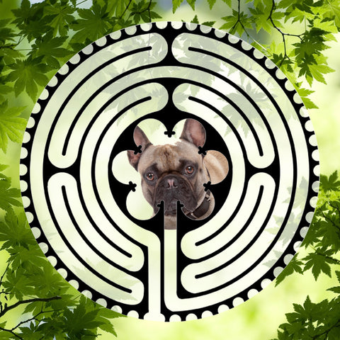 Bulldog French Tan - Doggy Labyrinth-maze