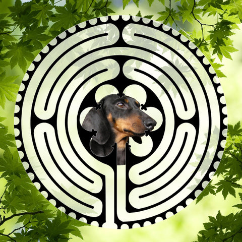 Dachshund Sideview - Doggy Labyrinth-maze
