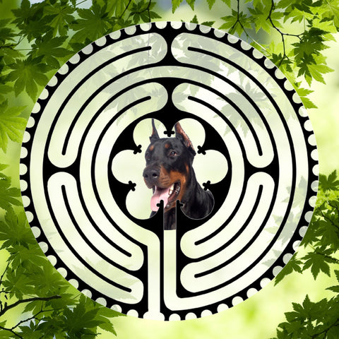 Doberman - Doggy Labyrinth-maze