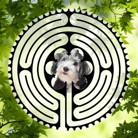 Havanese Light & Dark Doggy Labyrinth-maze