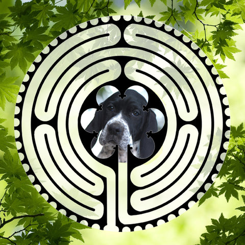 Pointer Puppy - Doggy Labyrinth-maze