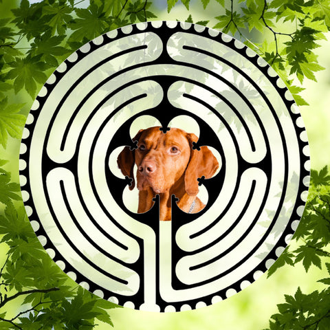 Hound Red - Doggy Labyrinth-maze
