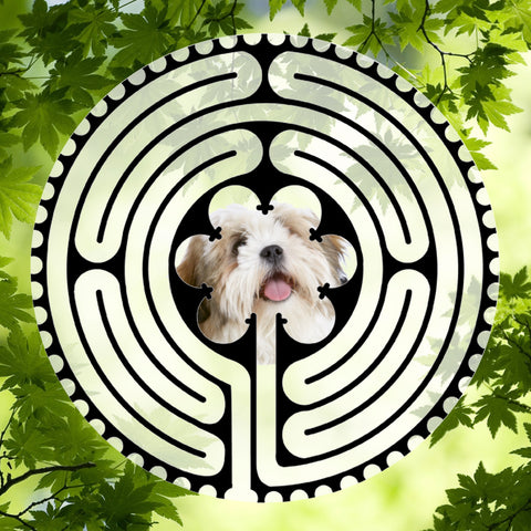 Lhasa Apso Light Doggy Labyrinth-maze