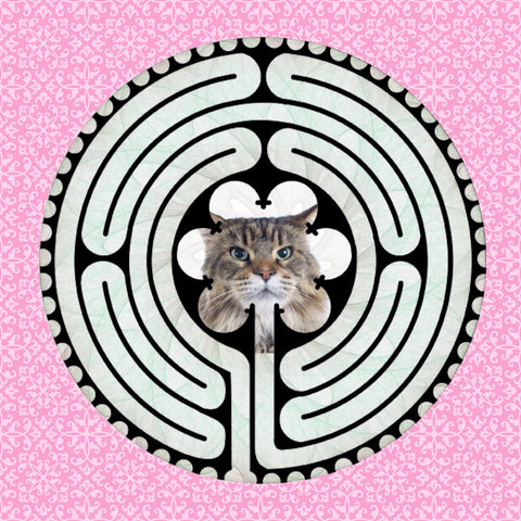 Main Coon Brown, Kitty-Kat Labyrinth-maze