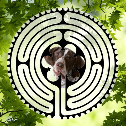 Pointer - Doggy Labyrinth-maze