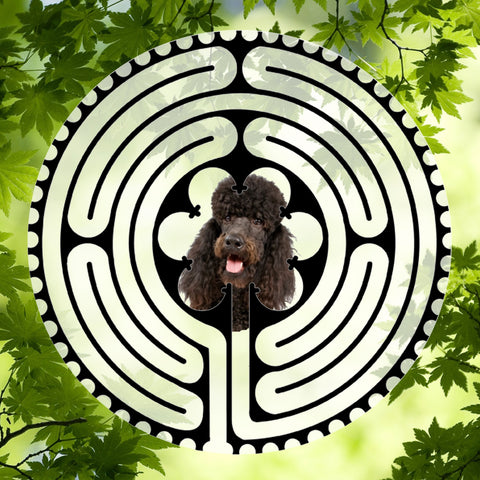 Poodle Dark Brown - Doggy Labyrinth-maze