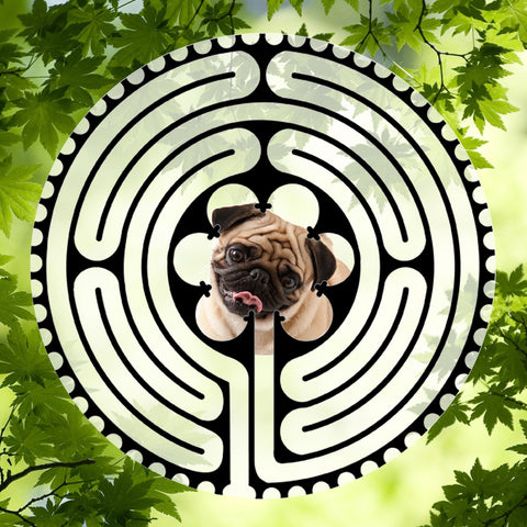 Pug Puppy Tan - Doggy Labyrinth-maze