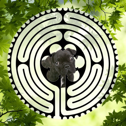Pug Puppy Black - Doggy Labyrinth-maze
