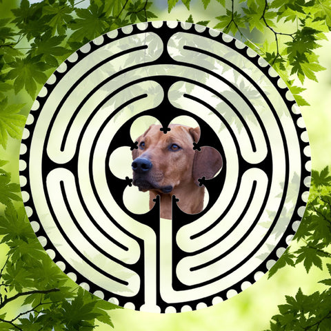 Ridgeback - Doggy Labyrinth-maze